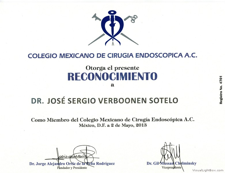 Member Recognition of the Mexican College for Endoscopic Surgery (May 2013)