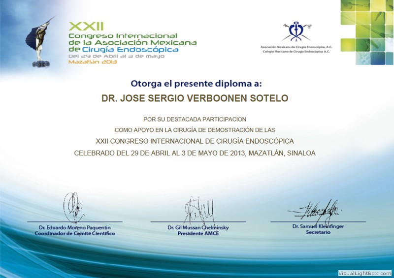 Participation Diploma in the International XXII Congress of Endoscopic Surgery (May 2013)